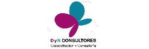DyN Consultores Logo